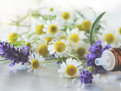 Chronische Krankheiten mit klassischer Homöopathie behandeln - Hausarztpraxis Friedenau Dr. Sonia Seddighi